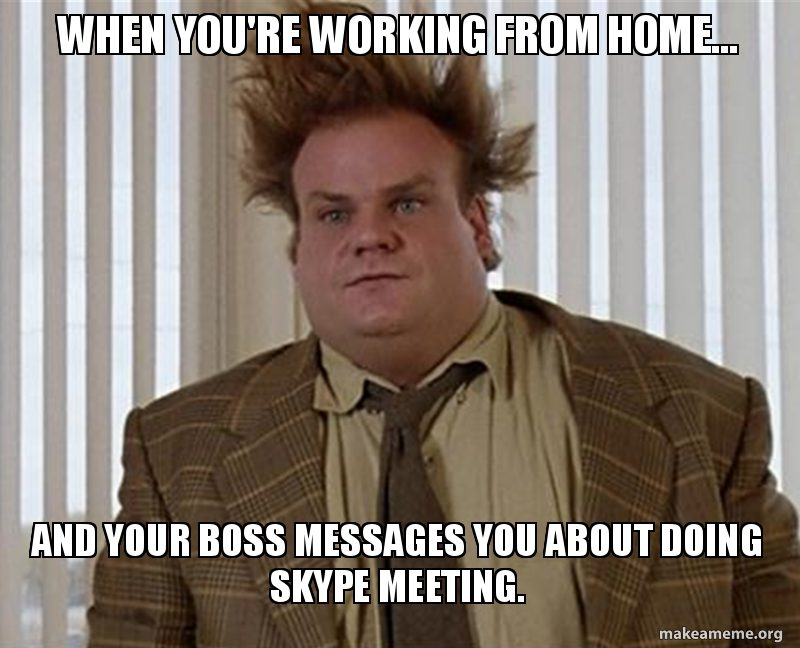 Work from home conference call meme